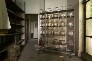 abandoned animal testing facility