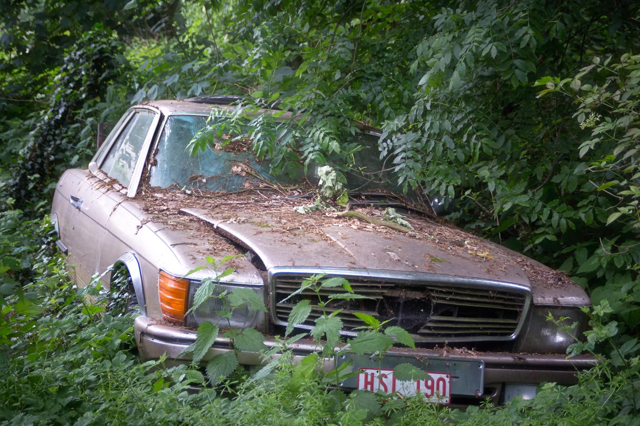 Classic Car Tags Kentucky